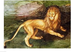 Lion by Albrecht Durer Art Print, 43 x 32 inches
