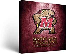 terrapin art and design