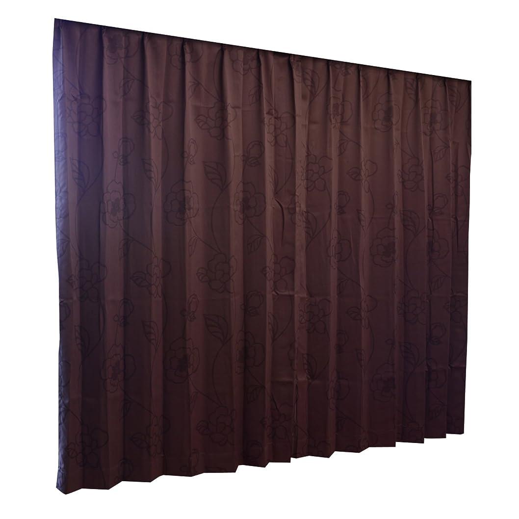 着実にプロテスタント失態Haruka?Style(ハルカ?スタイル) 1級遮光カーテン2枚組 グラシア 幅150×丈178cm ブラウン