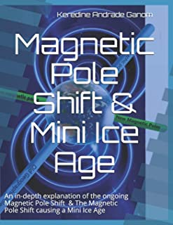 Magnetic Pole Shift & Mini Ice Age: An in-depth explanation of the ongoing Magnetic Pole Shift & a Mini Ice Age caused by ...