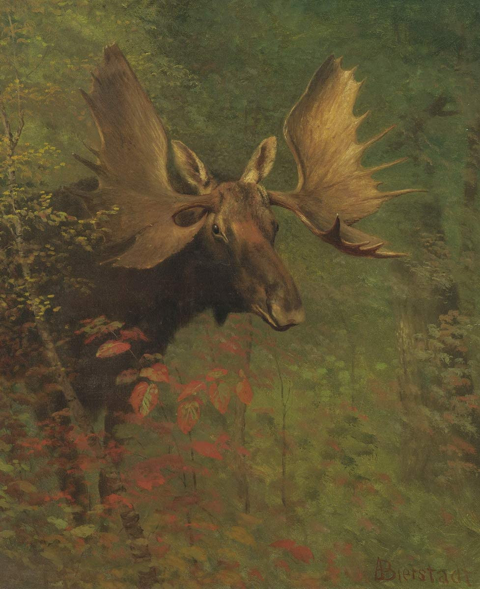 Berkin Arts Albert Bierstadt Giclee On Max 43% OFF Canvas-Famous sale Paint Print