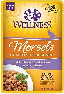 ウェルネス キャットフード 成猫用(1歳以上) ヘルシーインダルジェンス(穀物不使用) 香るとろみスープ仕立て チキン&チキンレバー 85g×12袋 (ケース販売)