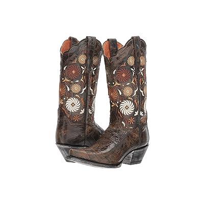 Dan Post Cheree (Chocolate) Cowboy Boots