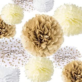VIDAL CRAFTS 20 Pieces Tissue Paper Pom Poms Kit (14
