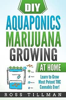 hydroponic setup for sale