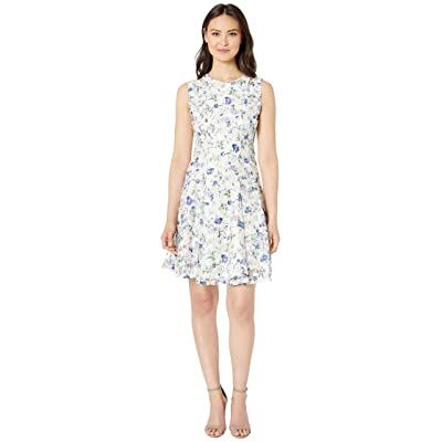 Gabby Skye Printed Rose Lace Seam Down Fit N Flare (Cream/Periwinkle) Women