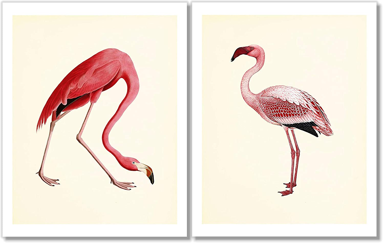 American Pink Flamingo Challenge the lowest price of Japan Art All items in the store Prints - Decor of Wall Vintage Set