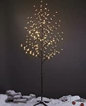 Best lighted trees for home decor Reviews