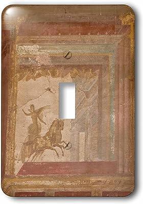 3dRose lsp/_190492/_1 Use Petroglyphs Toggle Switch V Bar V Heritage Site Arizona