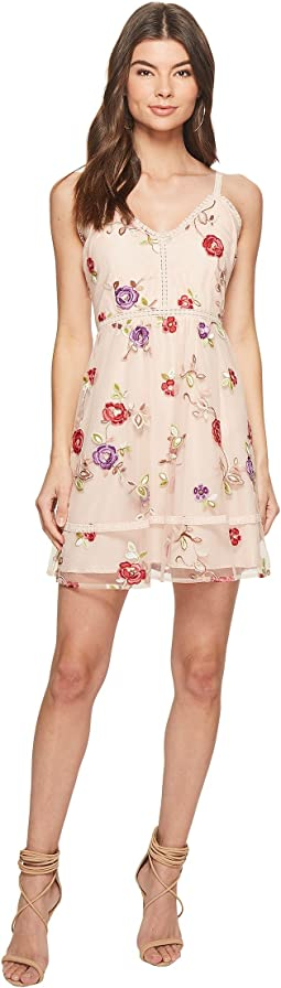 BB Dakota - Gemma Embroidered Fit and Flare Dress