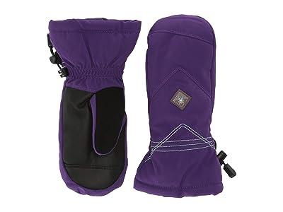 Spyder Kids Inspire (Little Kids/Big Kids) (Majesty) Extreme Cold Weather Gloves