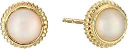 14K Yellow Gold Coin Edge Studs w/ Opal Earrings