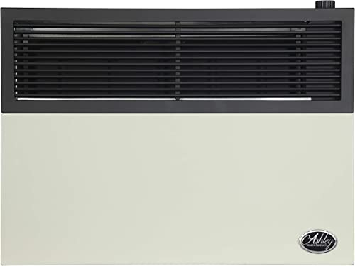 2021 Ashley Hearth Products DVAG17L lowest 17,000 BTU Direct Vent lowest Propane Heater, Cream online