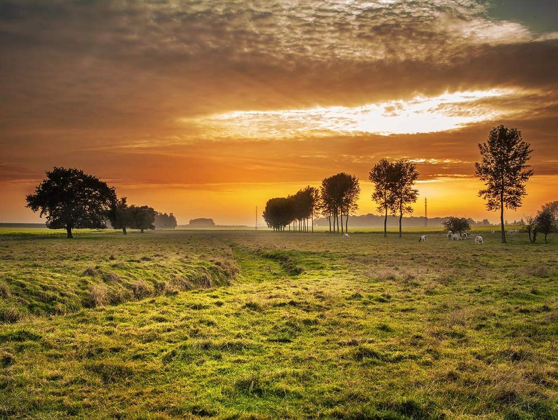 Lais Puzzle Landschaft Dämmerung Sonnenuntergang 2000 Teile B07PBK4K3Z Qualität und Verbraucher an erster Stelle | Verschiedene