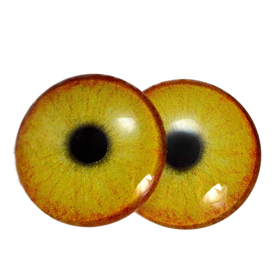 40mm Peach Yellow Flamingo Glass Eyes Doll Irises for Art Polymer Clay Taxidermy Sculptures or Jewelry Making Set of 2