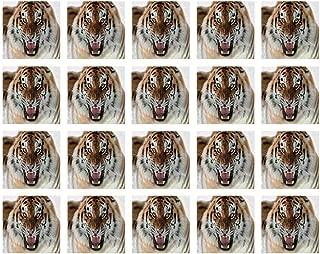 YOLIYANA Safari Decor Stylish Ceramic Tile Stickers,The Siberian Tiger Roar Teeth Golden Eyes Stripes Whiskers Attack Predator White Background for Kitchen Living Room,One Size