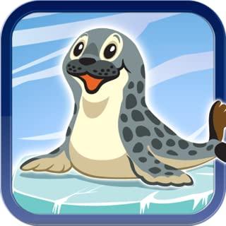 Glaciar Smart Flipper