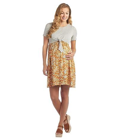 Everly Grey Lehua Maternity/Nursing Dress