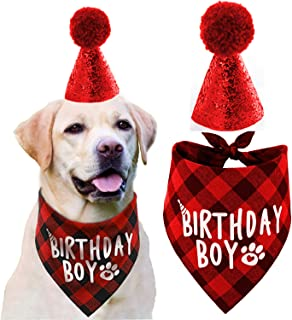 JPB Dog Birthday Hat and Dog Birthday Bandana Boy Set