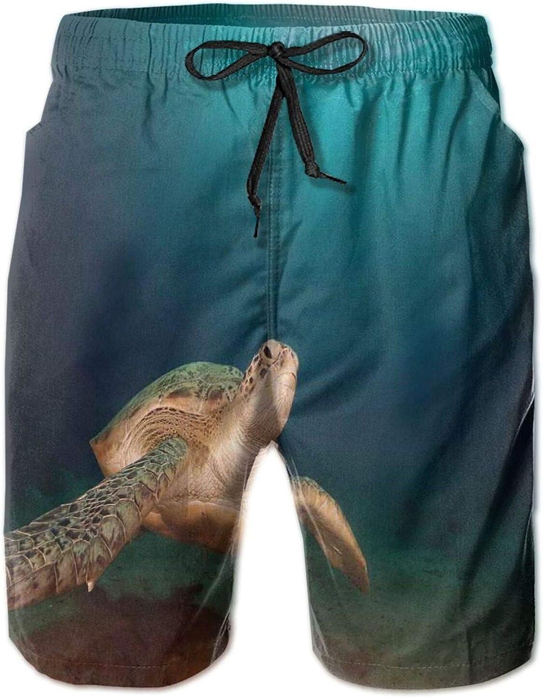 Green Turtle Swimming Underwater Sunbeams Aquatic Wildlife Picture Mens Swim Shorts Casual Workout Short Pants Drawstring Beach Shorts,XXL