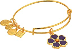 Alex and Ani Charity By Design Forget Me Not Bangle