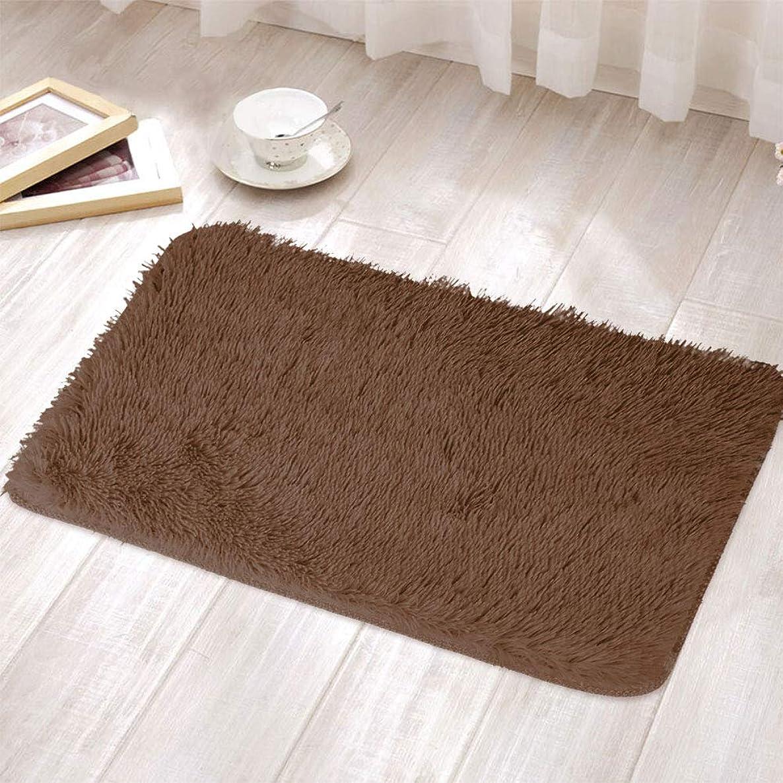 トン液体象ラグ ラグマット カーペット マイクロファイバー ぬいぐるみ絨毯 洗える 滑り止め 抗菌 防臭 防音 スーパーソフト 通気性 折り畳み可能 四季通用 床暖房 40*30cm Rosepoem ブラウン