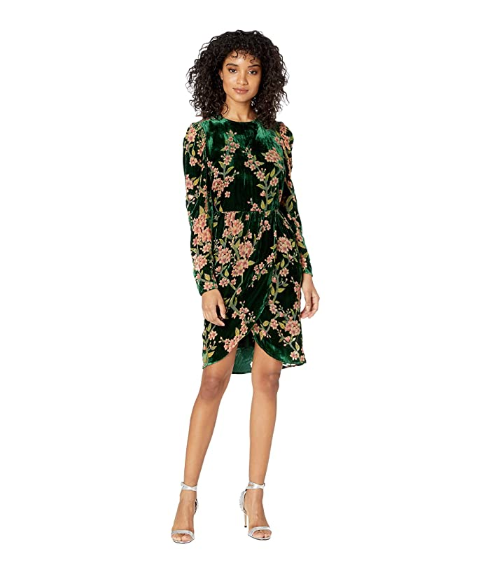 J.O.A. Burnout Velvet Wrap Dress (Emerald Floral) Women