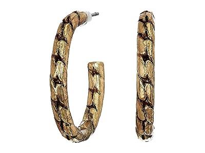 AllSaints Small Frozen Chain Hoop Earrings (Warm Brass) Earring