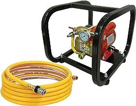 electric hydrostatic pump