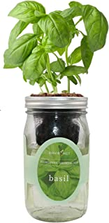 Environet Hydroponic Growing Kit, Self-Watering Mason Jar Herb Garden Starter Kit Indoor, Grow Your Own Herbs from Seeds (...