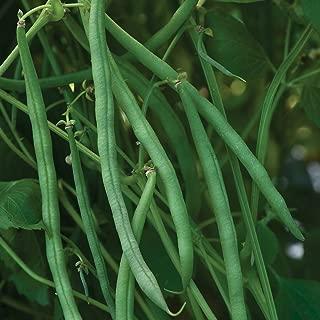 Burpee Beananza Bush Bean Seeds 2 ounces of seed