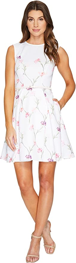Ted Baker Ahlanna Sketchbook A-Line Skater Dress