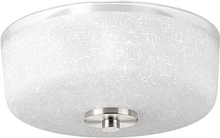 Progress Lighting P3620-09 Alexa Two-Light Flush Mount, Brushed Nickel