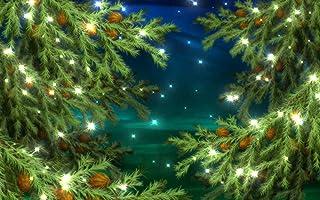 NIVIUS PHOTO FT 7728 Fotohintergrund für Weihnachten, Vinyl, 200 x 150 cm