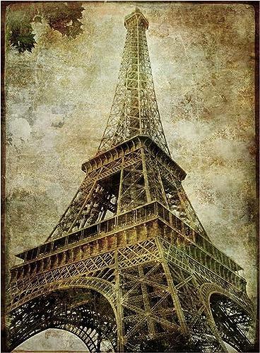 Larcele 500 Pieces Jigsaw Puzzle Eiffel Tower Landscape Art Paintings Wooden Puzzle for Adults Kids Ages 14+ YZPT-02(6602)