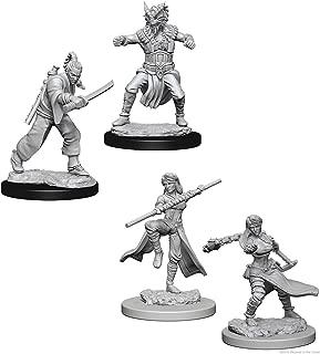 Dungeons & Dragons Nolzur's Marvelous Unpainted Miniatures Bundle: Human Female Monk W1 + Male Human Monk W8