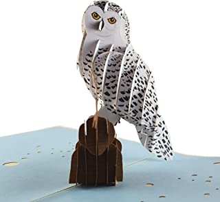 iGifts and Cards Magical Owl 3D Pop up Greeting Card Animal, Zoo, Bird, Cute, Nocturnal, Fun, Half-Fold, Happy Birthday, Just Because, Graduation, Love, Friendship, Thank You, Special Occasion, BFF