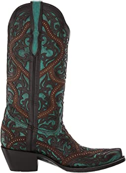 Turquoise/Brown