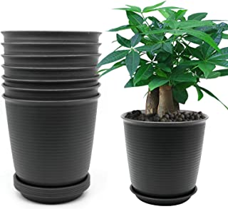 8 Pack 8.2 Inch Flower Plant Pots, Plastic Planter with Drainage Hole and Tray, Black Grey, Plants Not Included (Tall)