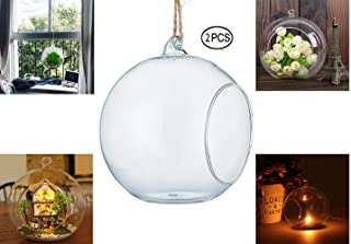 URBANSEASONS Glass Hanging Terrarium Air Plant Globe Candle Holder Home Decor Set of 2(6