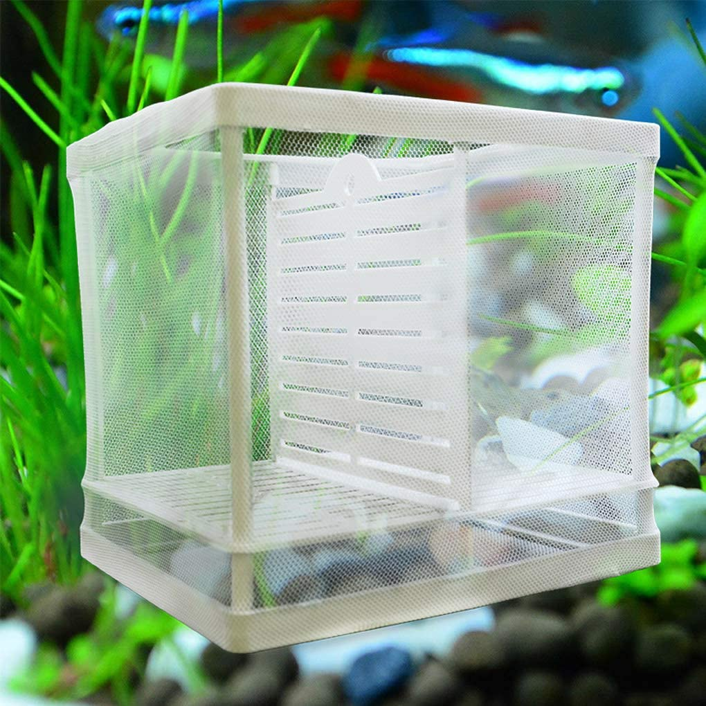 kexinda Isolation Mesh Box Suction Cup Design Fish Breeding Incubator Net Aquarium Hanging Hatchery Box