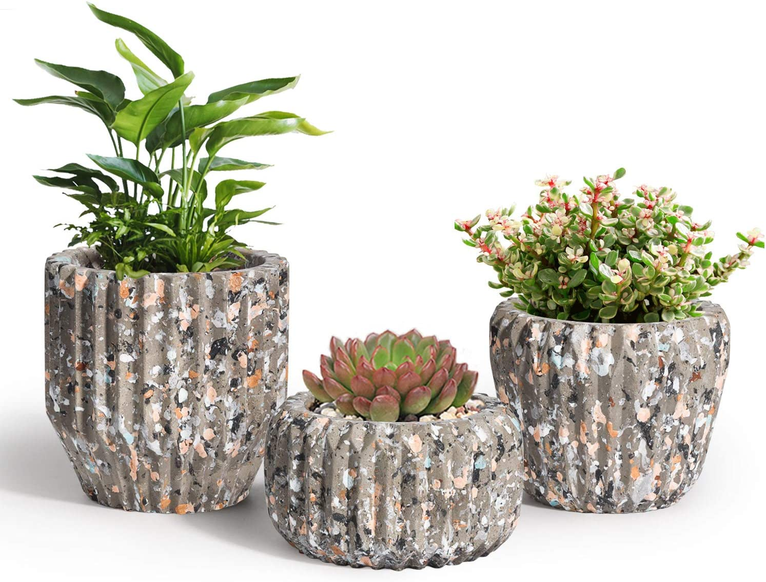 OppsArt 3 Inch Cement Cheap sale Succulent Pot Seattle Mall Carved Line Set of Small