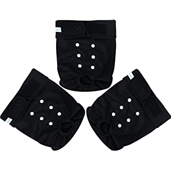 Paw Legend Reusable Female Dog Diapers, Pack of 3