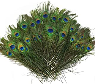 Vivian Beautiful Natural Peacock Feathers Eye Peacock Tail Feathers 10