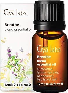 Ätherisches Öl für die Atmung – Ein befreiender Duft von Pfefferminze und Eukalyptus, befreit die Nase und Nebenhöhlen 10 ml – 100% natureine Duftöl-Mischung therapeutischer Güte