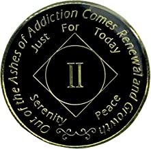 2 Year NA Gold Plated Medallion, Recovery Coin, NA Token