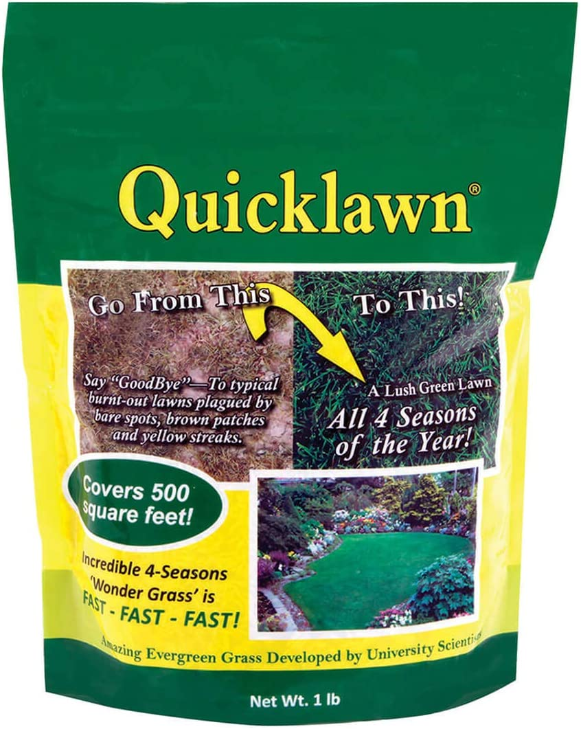 Max 82% OFF As Seen On TV All stores are sold Quicklawn 4 Season Evergreen Seed Grass - Lb 1 Bag