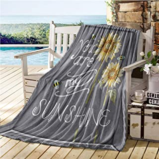Jecycleus Love Signs Decorations Collection, Throw Blanket, You are My Sunshine Quote on a Black Board with Bees and Sunflowers, Digital Printing Blanket 60x36 Inch Gray Yellow