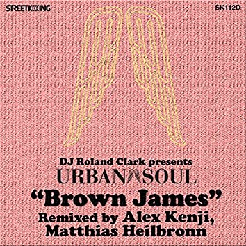 Brown James (Alex Kenji Rmx)