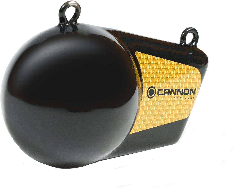 Cannon 10 pound Flash weight